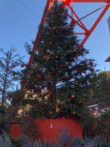 クリスマツツリー4
